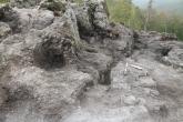 Area 21 - La buca di palo, parzialmente rasata, individuata quest'oggi.